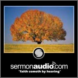 Tree of Life Christian Church