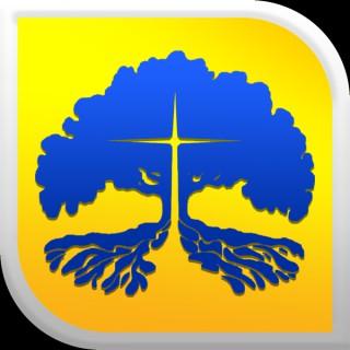 Tree of Life Church - New Braunfels