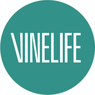 Vinelife Church Manchester Podcast