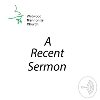 WildWords: Sermons from Wildwood Mennonite Church
