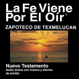 Zapoteco de Texmalucan Biblia - Zapoteco de Texmalucan Bible