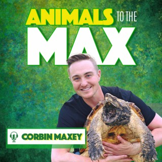Animals To The Max Podcast