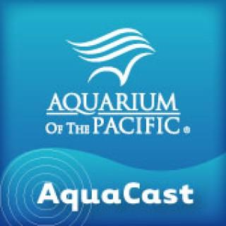 Aquarium of the Pacific AquaCast