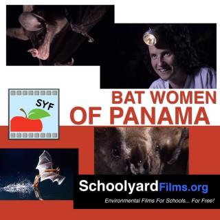 Bat Women of Panama