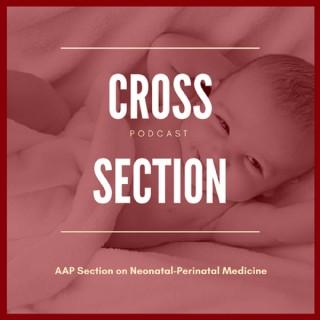 Cross Section (AAP Neonatal-Perinatal)