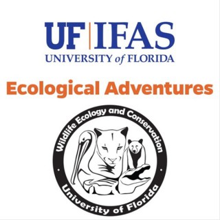 Ecological Adventures