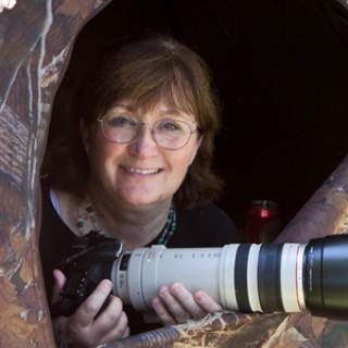 Laura Erickson's For the Birds