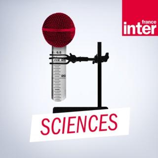 Le fil sciences