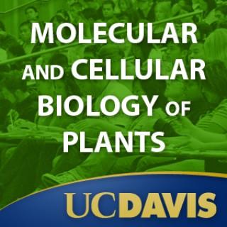 Molecular and Cellular Biology of Plants, Spring 2008