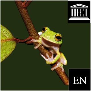 Natural Sciences (Videos)