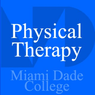 Physical Therapy - Beatriz Melendez - PHT 1201