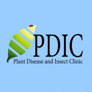 Plant Disease and Insect Clinic