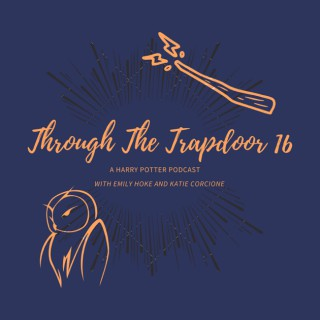 Through the Trapdoor 16