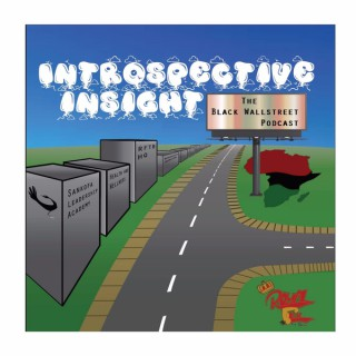 Introspective Insight