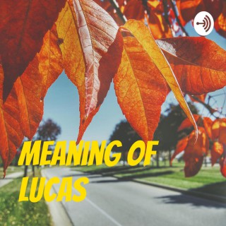 Meaning of Lucas