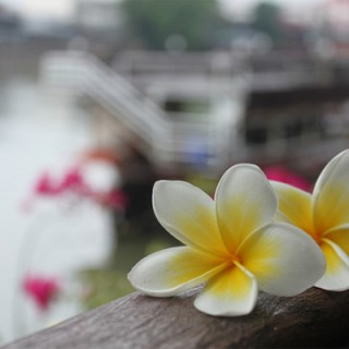 Sawadee Bangkok
