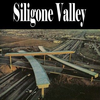 SiliGone Valley