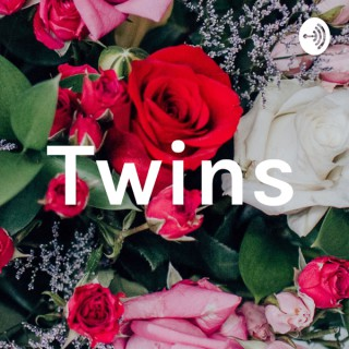 Twin Diaries