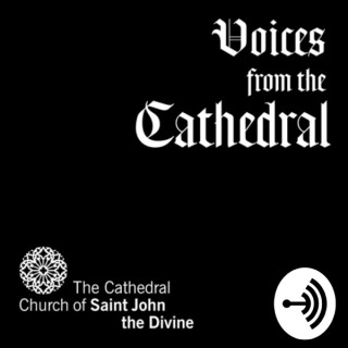 Voices from the Cathedral