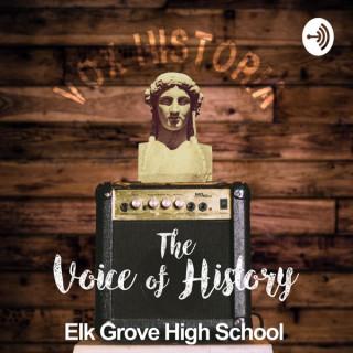 Vox Historia: The Voice of History
