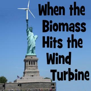 When the BioMass Hits the Wind Turbine