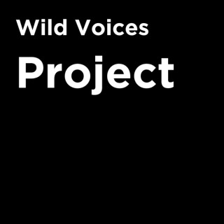 Wild Voices Project