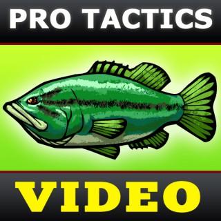 Bass Fishing Tactics Videos [BassFishin.Com]