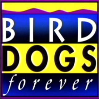 Bird Dogs Forever