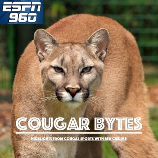 Cougar Bytes