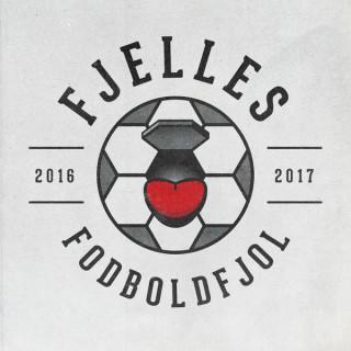 Fjelles Fodboldfjol