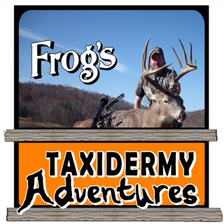 Frog's Taxidermy Adventures