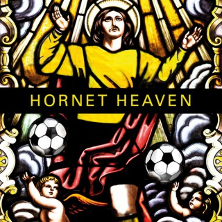 Hornet Heaven