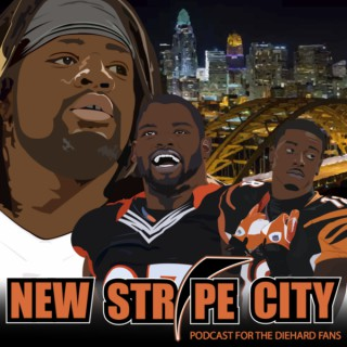 New Stripe City