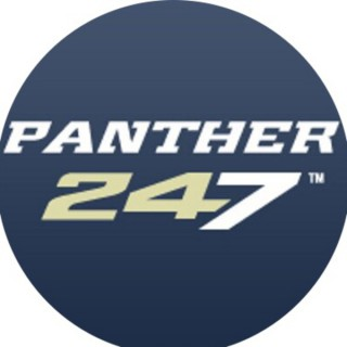 Panther Tracks on Panther247