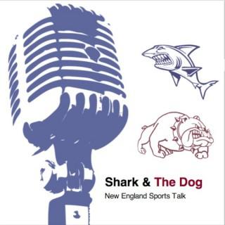 Shark and the Dog: Boston Sports