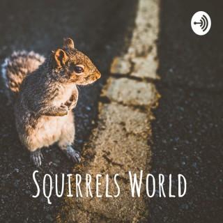 Squirrels World