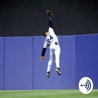 Youth Baseball: Player Development
