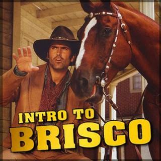 Intro to Brisco