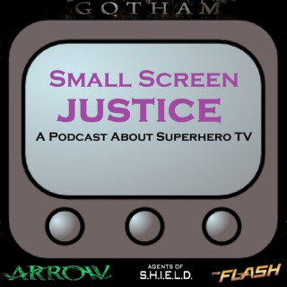 Small Screen Justice - Arrow, Gotham, The Flash, Agents of SHIELD, and More!
