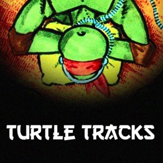 TurtleTracksPodcast
