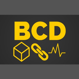 Blockchain Dynamics