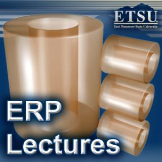 Enterprise Resource Planning (ERP) - Summer 2009
