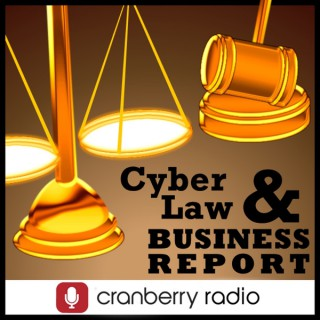 Cyber Law and Business Report on WebmasterRadio.fm