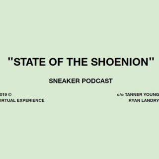 State of the Shoenion
