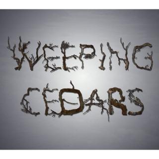 Weeping Cedars