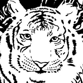 White Tiger Radio
