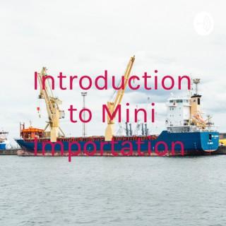 Introduction to Mini Importation