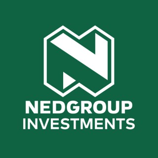 Nedgroup Investments Insights
