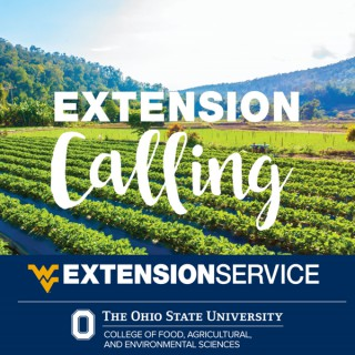 Extension Calling