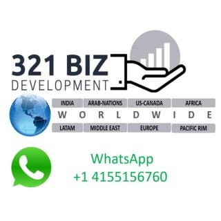 321 Biz Development